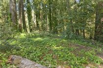 98 Conifer Way Woodacre, Ca 94904 - Image 9