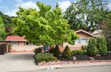490 Pinewood Dr San Rafael, CA 94903 - Image 18