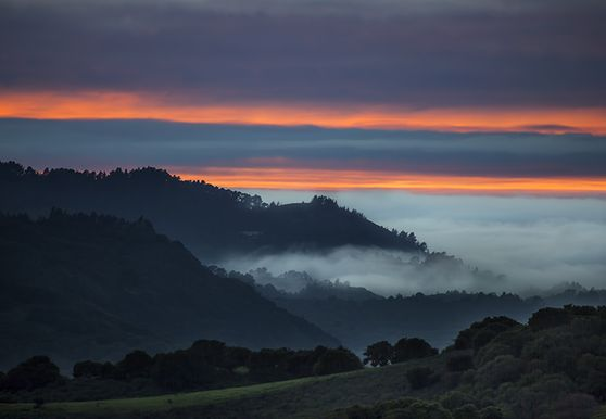 Photo of Monterey County - Photo 4
