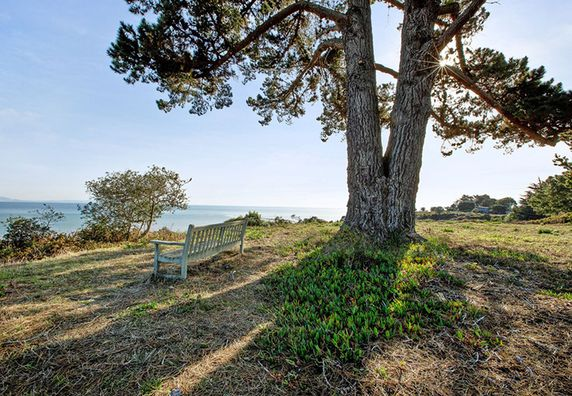 Photo of Bolinas - Photo 2