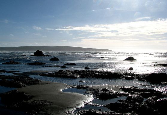 Photo of Dillon Beach - Photo 2