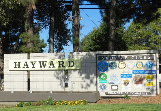 Photo of Hayward - Photo 4