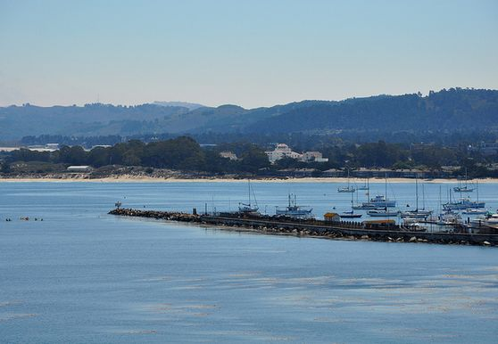 Photo of Marina, Monterey - Photo 1