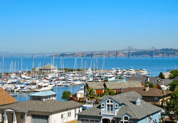 Photo of Tiburon - Photo 2