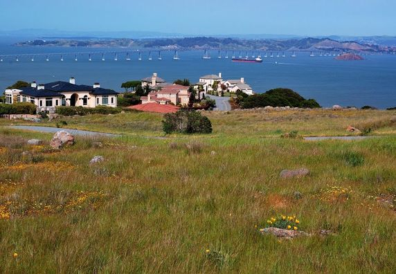 Photo of Tiburon - Photo 3