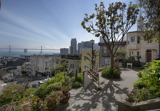 Photo of Telegraph Hill - Photo 5