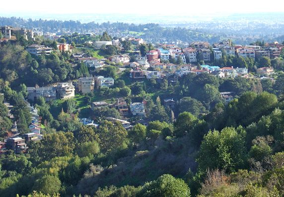 Photo of Berkeley Hills - Photo 6