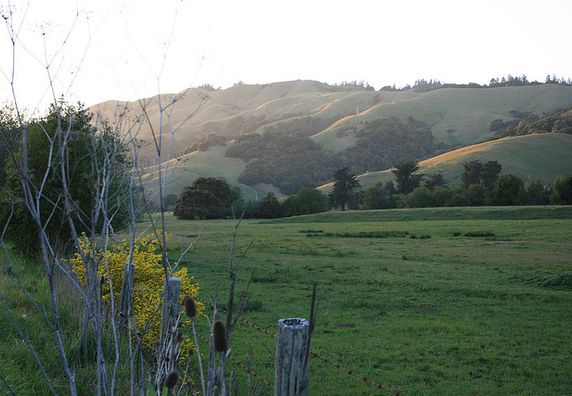 Photo of San Geronimo - Photo 2