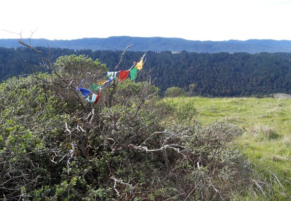 Photo of Forest Knolls, Marin - Photo 23