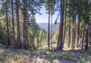 145 Magic Mountain Road Cazadero, CA 95421