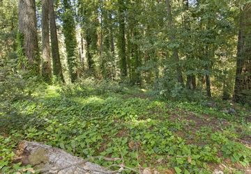98 Conifer Way Woodacre, CA 94904