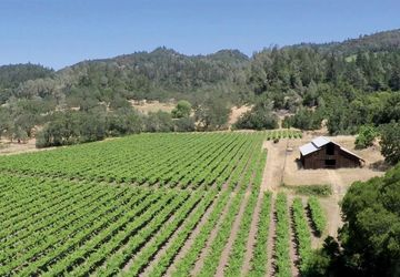 280 Crystal Springs Road St. Helena, CA 94574