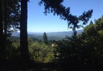 500 Viewridge Drive Angwin, CA 94508