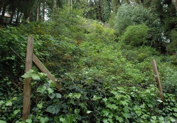 21495 Starrett Hill Drive Monte Rio, CA 95462