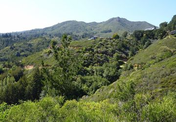 153 Myrtle Avenue Mill Valley, CA 94941