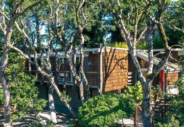 118 Harvard Avenue Mill Valley, CA 94941