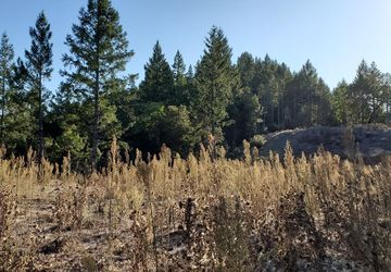 6100 West HWY 20 Willits, CA 95490