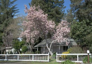 121  Griswold Avenue Kenwood, CA 95452